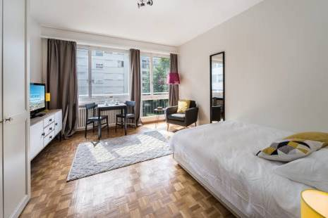 Very Luminous and Calm Furnished Studio in Geneva Center