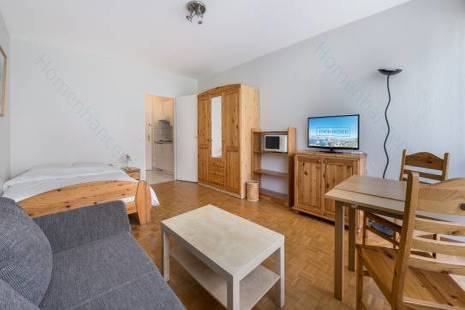 Full of Light Furnished Studio Apartment in Geneva Center