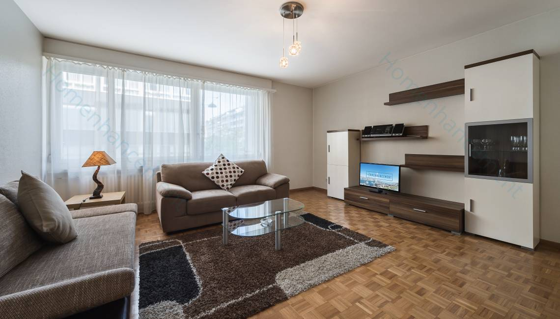 Rental Agreeable Furnished Apartment, in Geneva Center for a Flexible Long Term Period - Champel