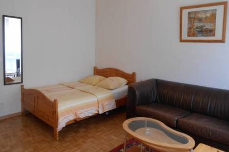 Lovely Furnished and Affordable Studio, with Chalet Style in Geneva Center