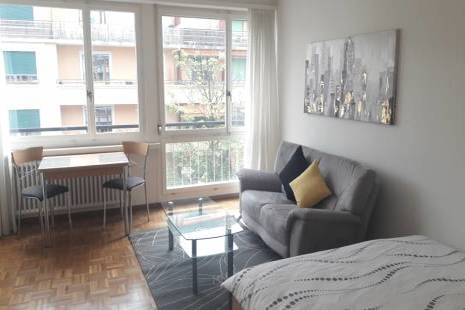 Colorful Furnished Studio, in Geneva Center for a Flexible Period