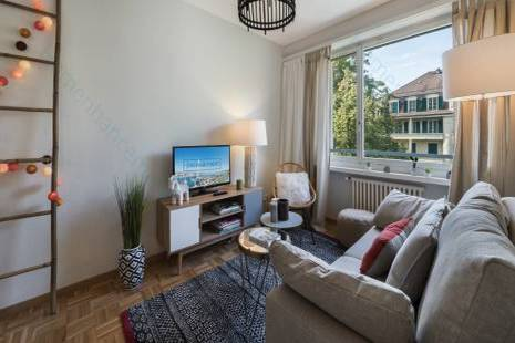 Modern Furnished One Bedroom Apartment, in Geneva Center