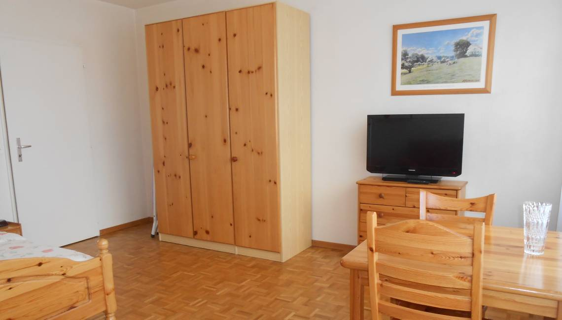Rental Charming Fully Furnished Studio with Bright Wood Furniture, in Geneva Center - Champel