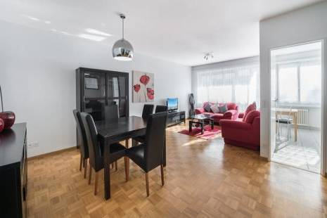 Beautiful New Furnished Apartment, in Geneva Center