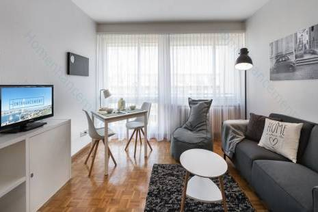 Modern Renovated and Furnished Studio, in Champel