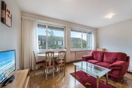 Cheerful Furnished Apartment, in Geneva Center