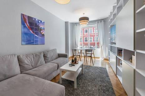 Splendid New Furnished Apartment, in Geneva Center Close to Lake Geneva