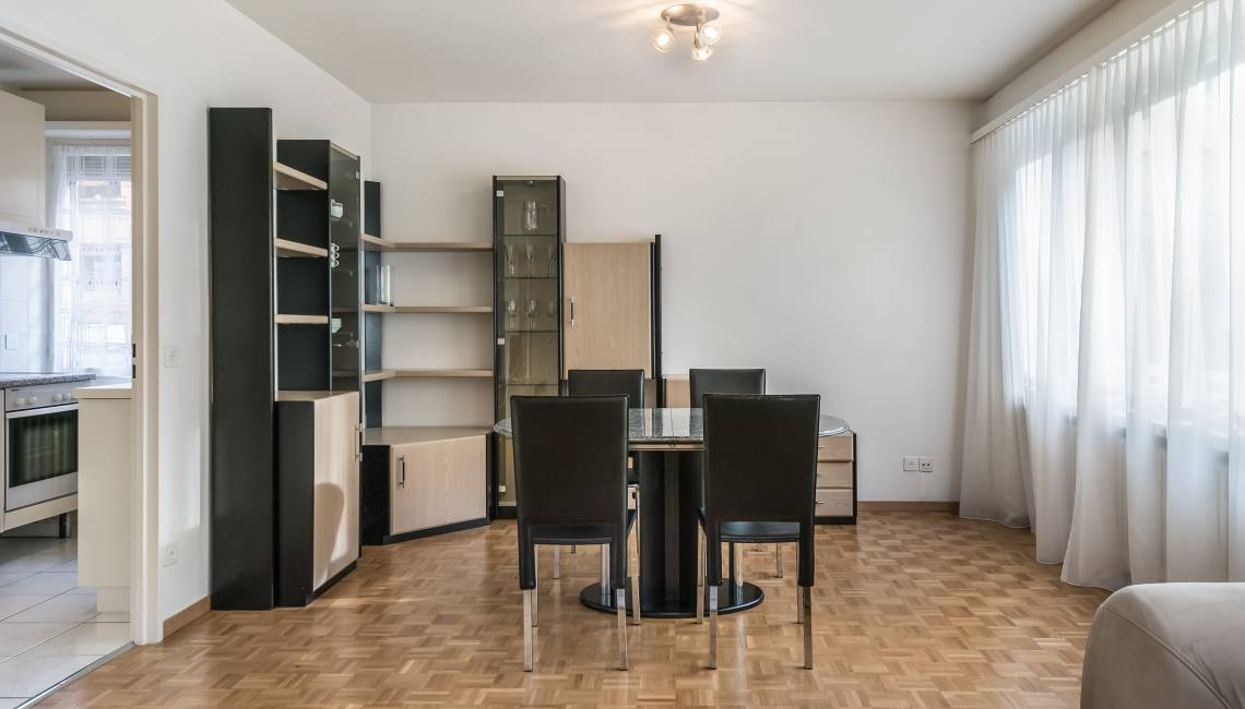 Rental Functional Fully Furnished Apartment, Close to Geneva Center - Champel