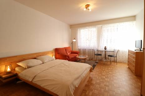 Budget Furnished Studio Apartment in Geneva Center