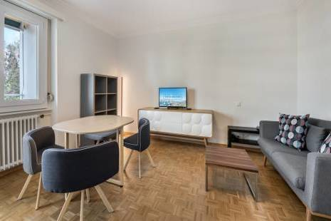 Refurbished modern studio in Champel
