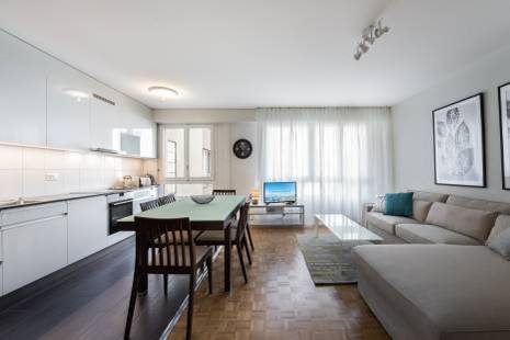 1 bedroom apartment in the vibrant neighborhood of Pâquis