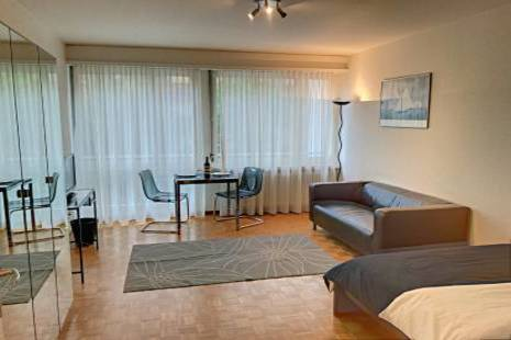 New Budget Furnished Studio Apartment almost in Geneva Center