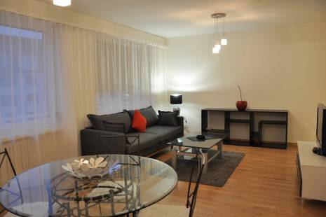 Nice 1 bedroom Apartment in the Heart of Champel close to Bertrand Park