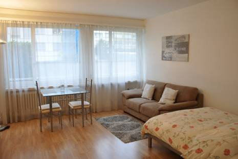 New Furnished Studio Apartment in Geneva Center