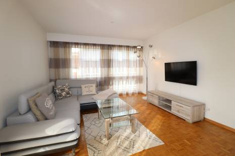 Fully Furnished 1 bedroom apartment near Geneva Center