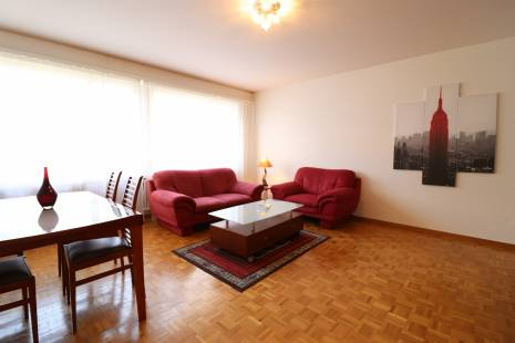 Functional Fully Furnished 1 bedroom Apartment, Close to Geneva Center