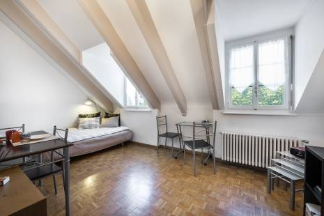 Charming Furnished Apartment above River Carouge